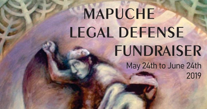 Recaudación para la defensa legal del pueblo indígena mapuche
