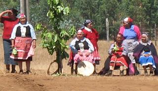 Reseña de la vida de Juana Queipul del Lof Temucuicui