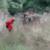 Carabineros que desnudaron a niños mapuche en Ercilla aún ejercen sus funciones
