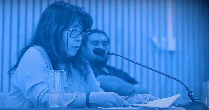 Myrna Villegas – Encuentro Defensa Sur: Perspectivas ante el poder colonial.